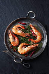Prawns with hernbs, chili and garlic in iron pan - CSF28159