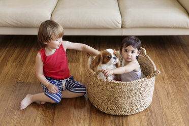 Toddler girl sitting in a basket with dog while her brother sitting on the floor besides - LITF00567