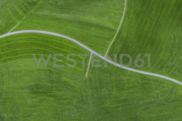 Empty country road, aerial view - MMAF00059 - Michael Malorny/Westend61