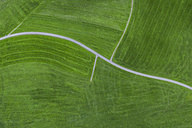 Empty country road, aerial view - MMAF00059