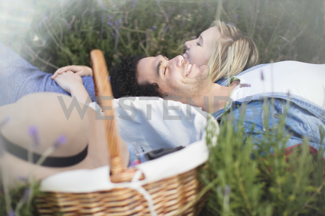 Young couple lying in lavender field - ZEF13237