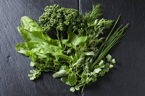 Ingredients of Frankfurt green sauce - CSF28185
