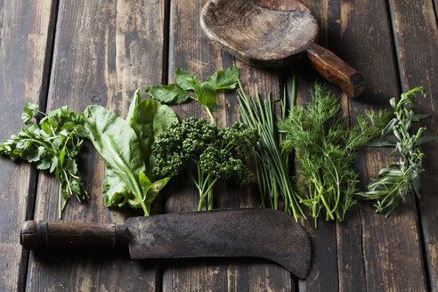 Ingredients of Frankfurt green sauce, old cleaver and wooden spoon - CSF28188