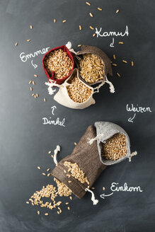 Sachet with different sorts of grains - MYF01893