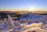 Germany, Bavaria, Bavarian Forest in winter, Bodenmaiser Riegel at sunset - SIEF07371