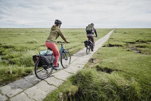 Germany, Schleswig-Holstein, Eiderstedt, couple riding bicycle through salt marsh - RORF00733