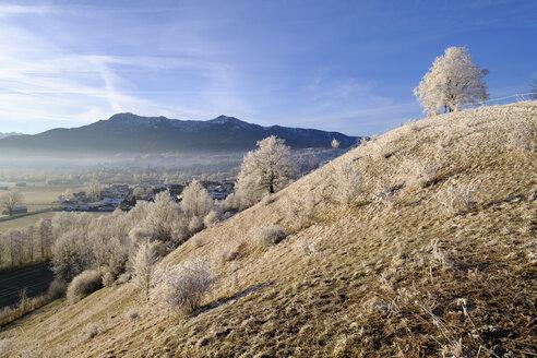 Germany, Bavaria, Grossweil, winter morning - SIEF07388