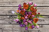 Tulips - TCF05360