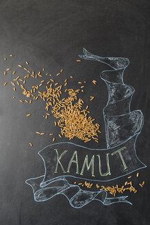 Kamut grains - MYF01895