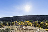USA, New Mexico, Frijoles Canyon, Bandelier National Monument, Ruins of the Ancestral Pueblo People, Tyuonyi - FOF09165