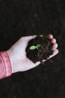 Hand holding sprout with garden soil - GEMF01574