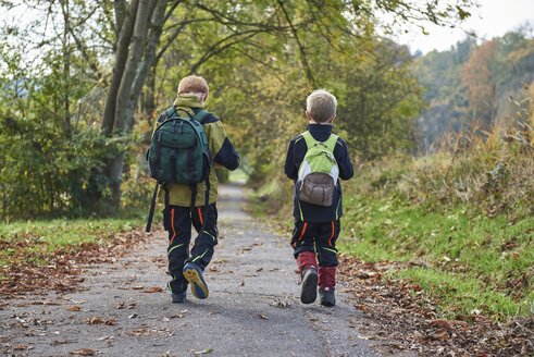 Back view of two little boys with backpacks walking side by side in autumnal nature - JEDF00284