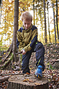 Redheaded boy treating branch with bow in autumnal forest - JEDF00287