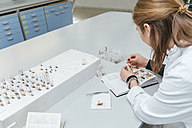 Laboratory technician working in biology lab - ZEDF00560