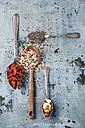 Spoons of black chia seeds, wolfsberries, nuts and quinoa - MYF01903