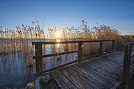 Italy, Umbria, Perugia, Lake Trasimeno, Old wooden bridge and reed at sunset - LOMF00567
