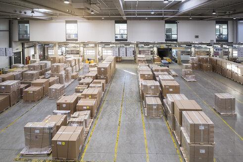 Factory warehouse - DIGF01816