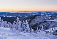 Germany, Bavaria, Bavarian Forest in winter, Great Arber, snow-capped spruces in the morning - SIEF07410