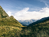 Switzerland, Grisons, Alps, Alpine meadow - JUBF00220