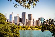 Australia, Sydney, view to skyline - PUF00643