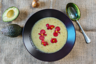 Cream of avocado soup garnished with edible flowers - KIJF01432
