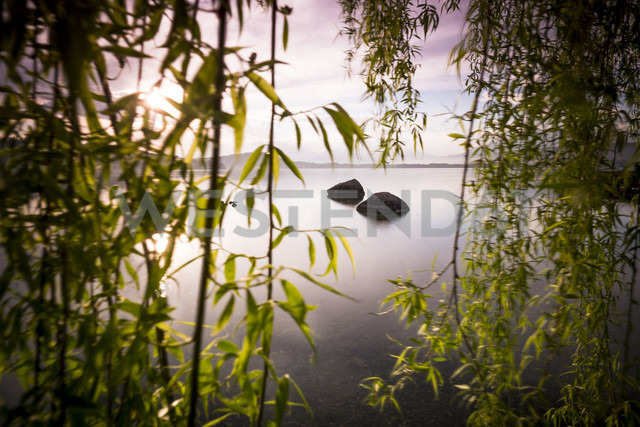 Italy, Lago Viverone at sunset - SIPF01630
