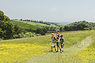 UK, England, Cornwall, three boys walking in meadow - NMSF00070