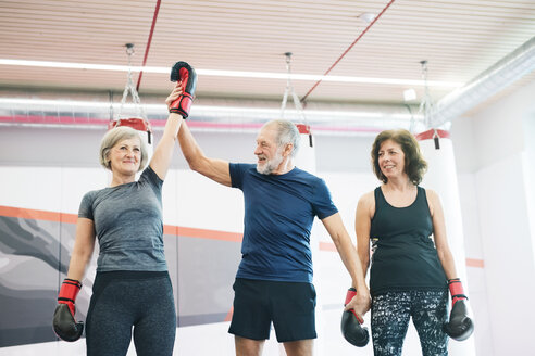 Group of happy seniors working out in gym, boxing - HAPF01685