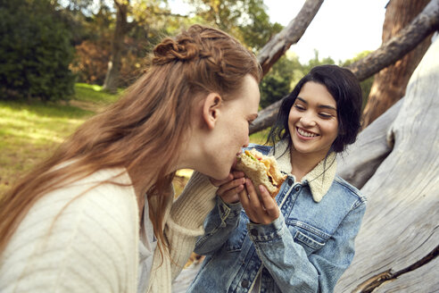 Two best frineds eating a sandwich together in nature - SRYF00446