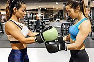 Two women preparing for a boxing match in gym - MGOF03257