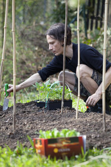 Mann gardening in allotment - NDF00639