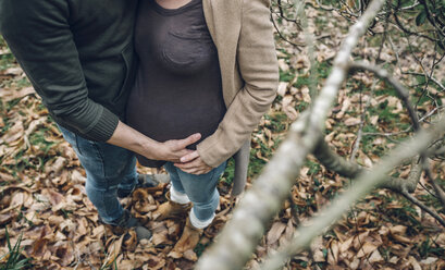 Man holding belly of pregnant woman in nature - DAPF00744