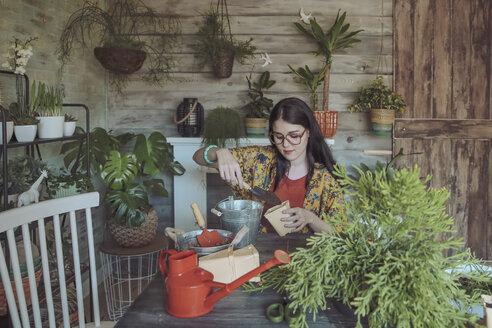 Young woman planting cactuses - RTBF00873