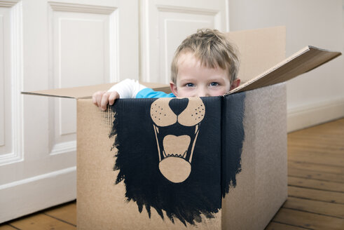 Boy inside a cardboard box painted with a lion - PSTF00003