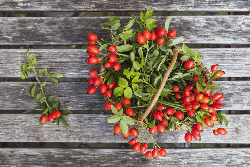 Wickerbasket of rosehips on wood - GWF05208