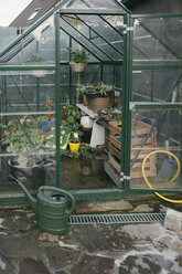 Greenhouse with seedlings in a garden - MFF03496