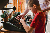 Father and son planting and sowing seeds - NMSF00106