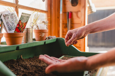 Planting and sowing seeds - NMSF00112