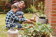 Father and son planting  and sowing seeds together - NMSF00115
