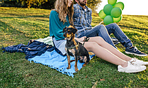 Young couple sitting on blanket on a meadow with their dog - DAPF00760