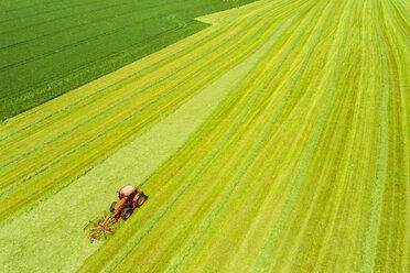 Hay tedder on field - MAEF12215
