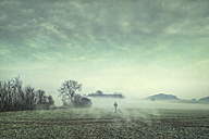 Man on field in fog, composite - DWIF00856