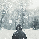 Rear view of man in winter landscape - DWIF00862