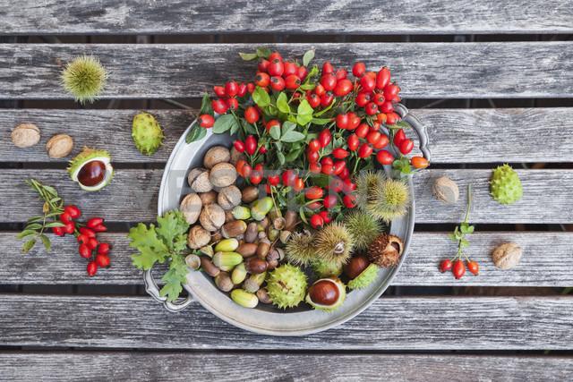 Tin plate of autumn harvest on wood - GWF05214 - Gaby Wojciech/Westend61