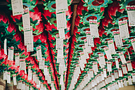 South Korea, Gyeongju, Lotus shaped lanterns in Bulguksa Temple - GEMF01648