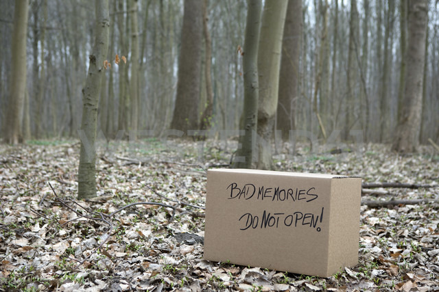 Cardboard box with 'Bad memories' in the woods - PSTF00028 - Petra Stockhausen/Westend61