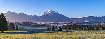 Germany, Bavaria, Ammergau Alps panorama in the morning - WGF01085