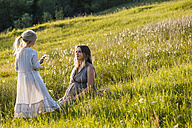 Pregnant mother and daughter on a meadow - TCF05431