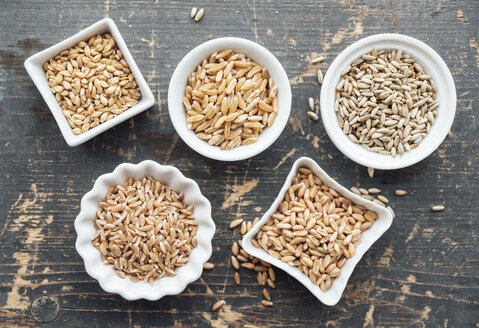 Ancient grains in bowls - IPF00390