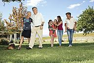 Happy extended family in garden - ZEF13945